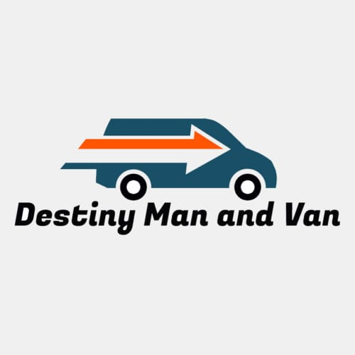 Destiny Man and Van logo