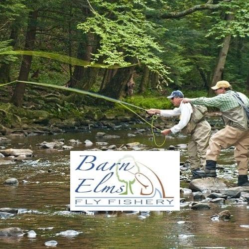 Barn Elms fisheries