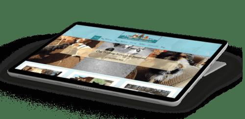 wordpress agency website