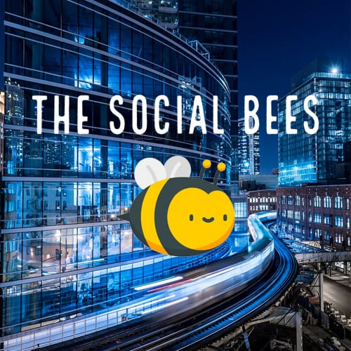 the social bees website