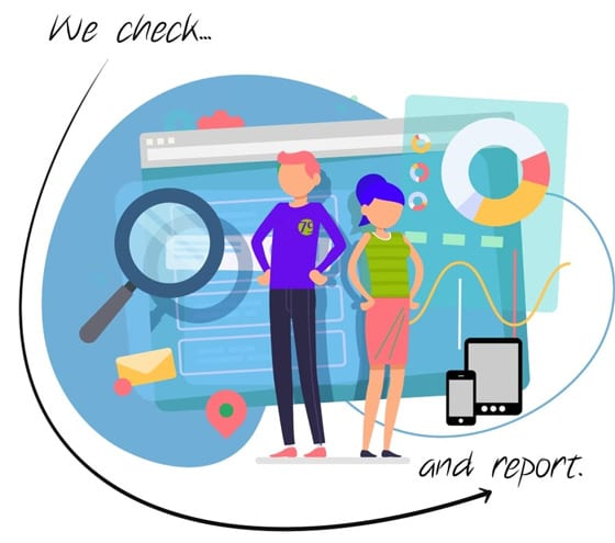 website audit checking