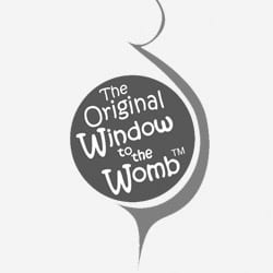 Logo original window to the womb